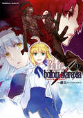 Fate/hollow ataraxia / 1